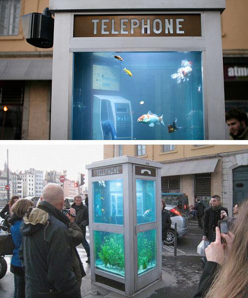 Cabine t l phonique aquarium lyon for Le cabine progetta le planimetrie