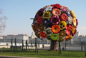 flower tree bellecour lyon
