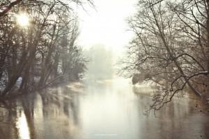 parc tete d or lyon hiver