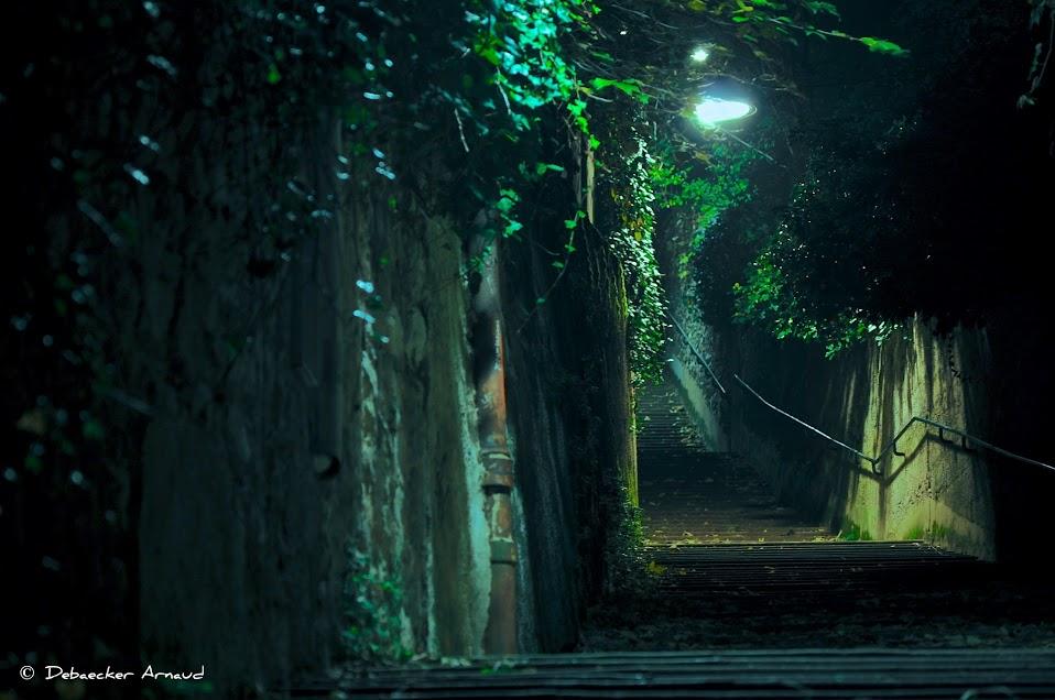 fourviere nuit escalier
