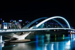 Pont raymond barre lyon gerland