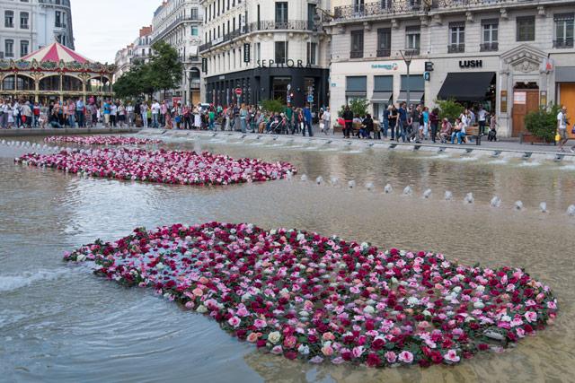 Lyon-roses
