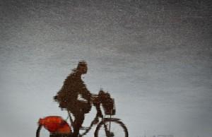 Berges du Rhône - vélo'v